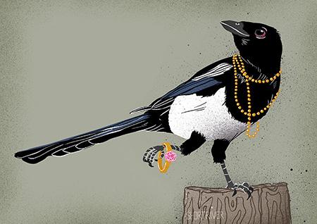 Urban Birds –Maggie Magpie